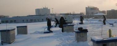 Odśnieżanie dachów Łódź, usuwanie sopli